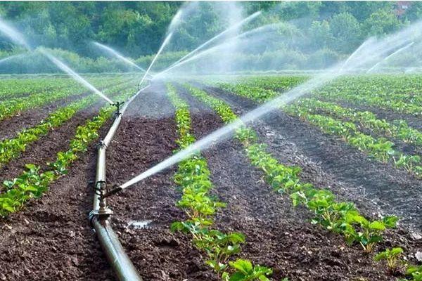Sistemas de irrigación y drenajes
